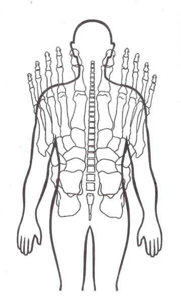 Болят тазобедренные суставы причины и лечение Суставы